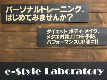 e-Style Laboratoryの画像
